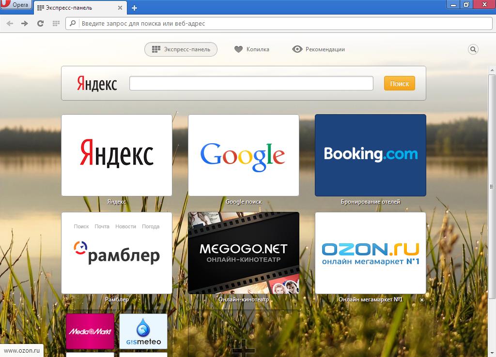 Cписок все браузеры Opera Next