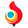Список все браузеры Torch