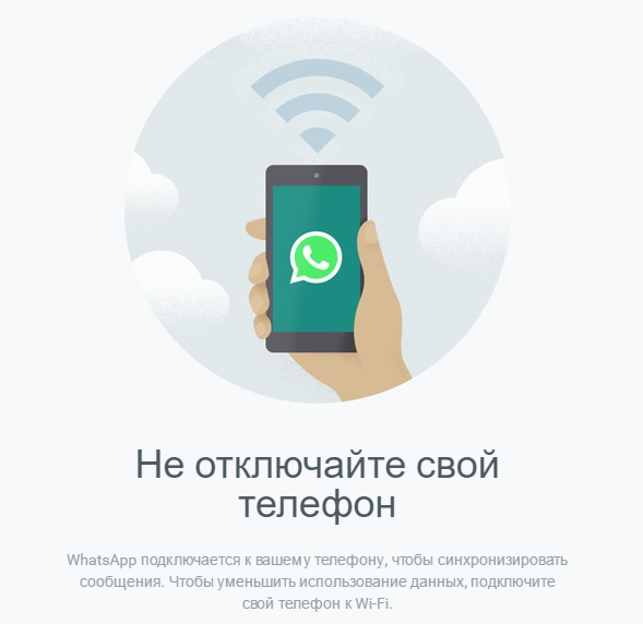 Внешний вид программы WhatsApp