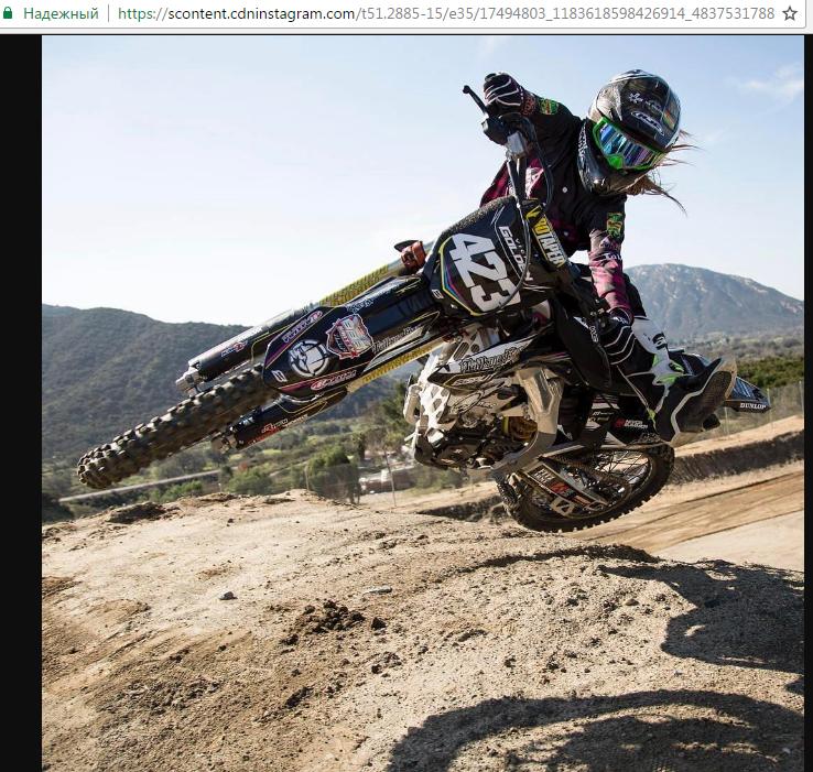 Нужная фотография в окне браузера доступна для скачивания