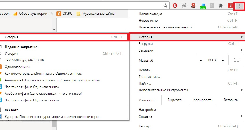 История посещения в Chrome